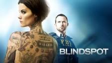 Max Darwin guest staring on NBC Blindspot.